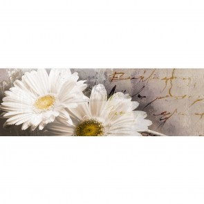 Giclee Witte margriet